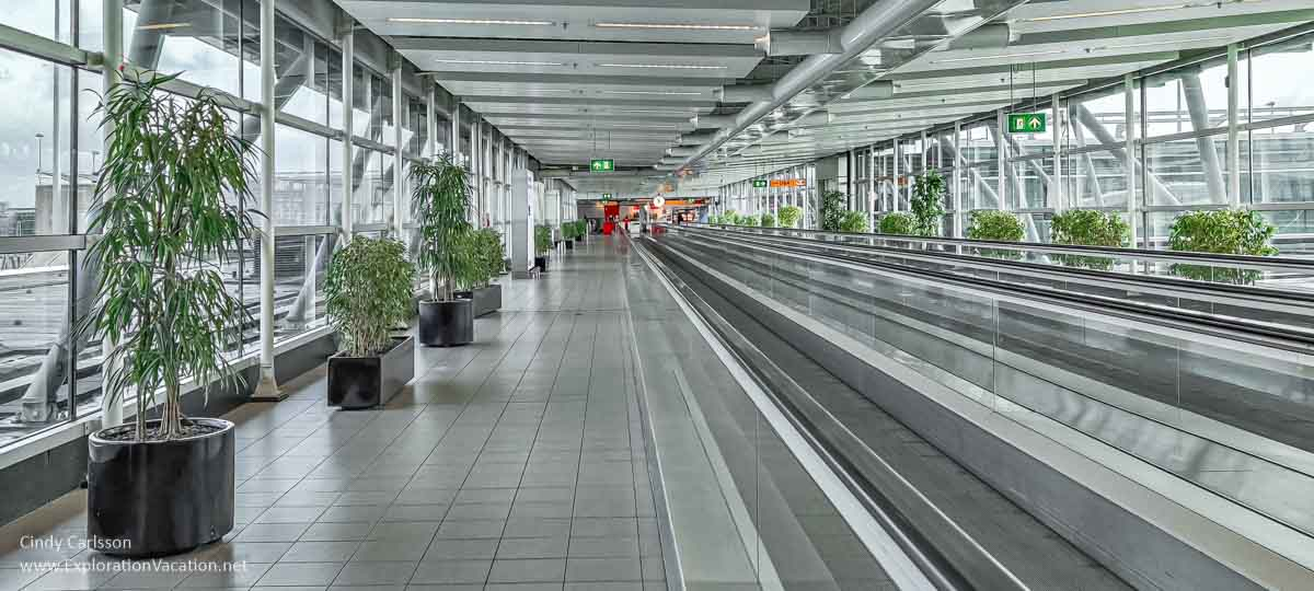 Vacant airport walkway with windows and plants but no travelers