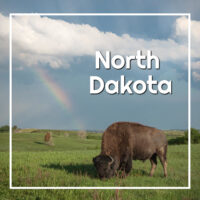"buffalo grazing under a rainbow with text ""North Dakota"""