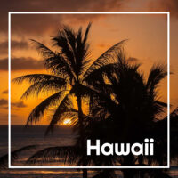 "sunset over the sea behind palms with text ""Hawaii"""