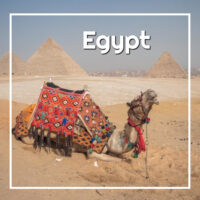 "camel by the pyramids with text ""Egypt"""