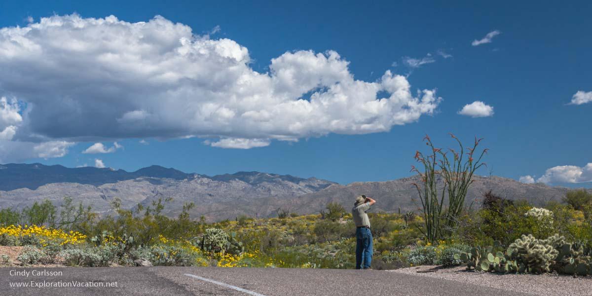 man with binoculars along a road through the desert
