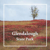 "meadow with fall colors and text ""Glendalough State Park"""