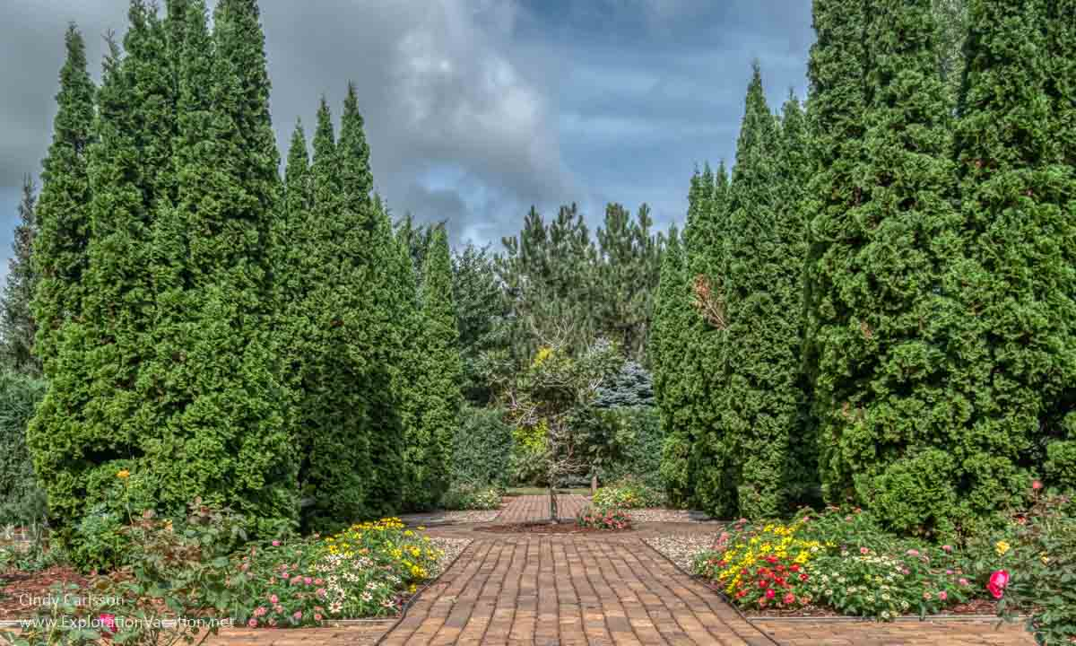 formal garden with flowers and evergreen shrubs