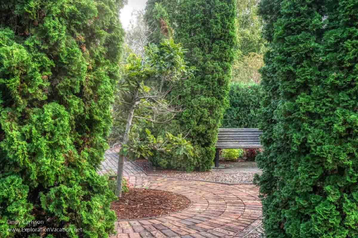 paved pathways, shrubs, and bench