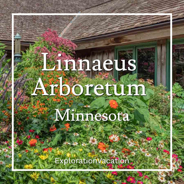 """flowers by a building with text """"Linnaeus Arboretum in Minnesota"""""""