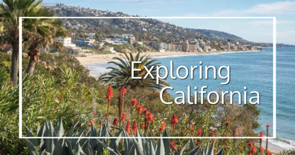 """flowers and palms above the ocean with text """"Exploring California"""""""