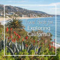 "flowers and palms above the ocean with text ""Travel Guide for Exploring California"""