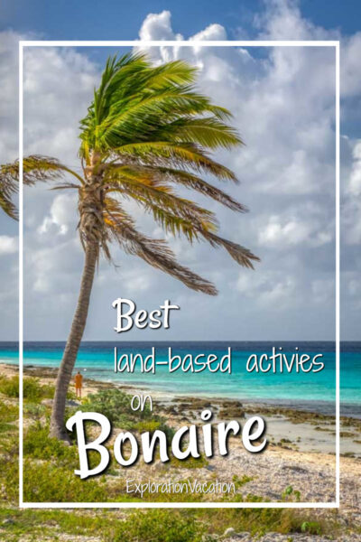 """palm tree and beach with text """"best land-based activities on Bonaire"""""""
