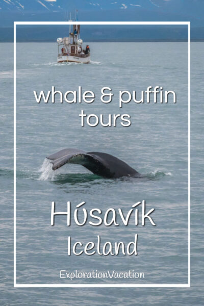 "whale with boat with text ""Husavik Iceland whale and puffin tours"""
