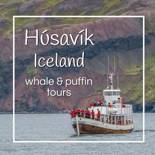 """whale watching boat with text """"Husavik Iceland whale and puffin tours"""""""