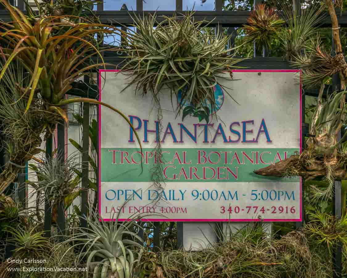 Phantasea sign with plants