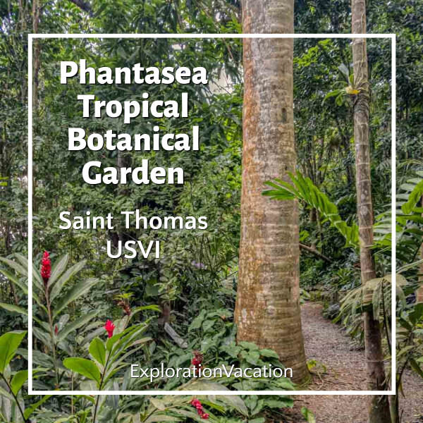 "tropical plants and path with text ""Phantasea Tropical Botanical Garden St Thomas"""
