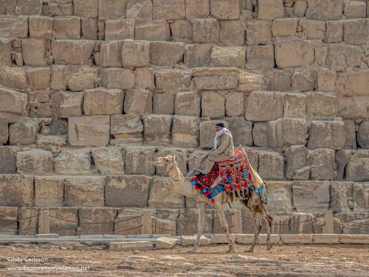 camel and rider next to pyramid