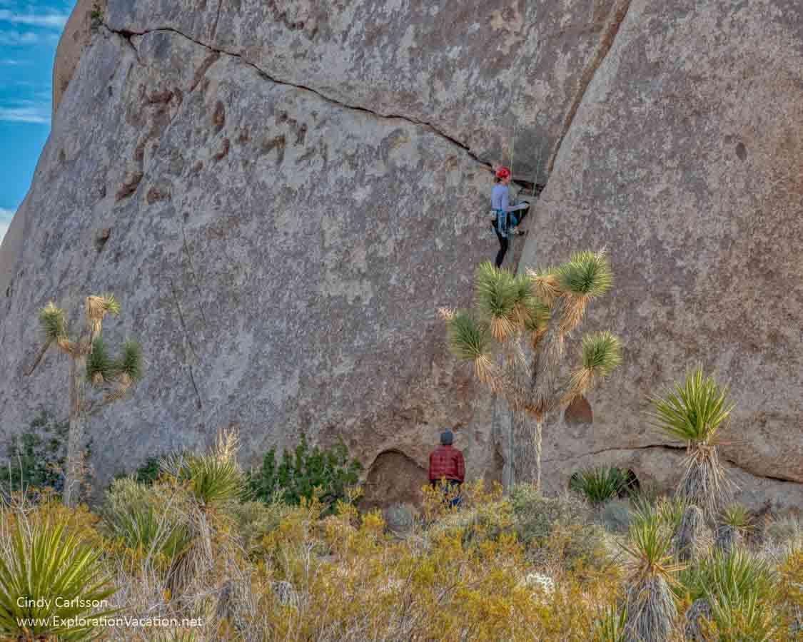 photo of rock climbers at Joshua Tree park