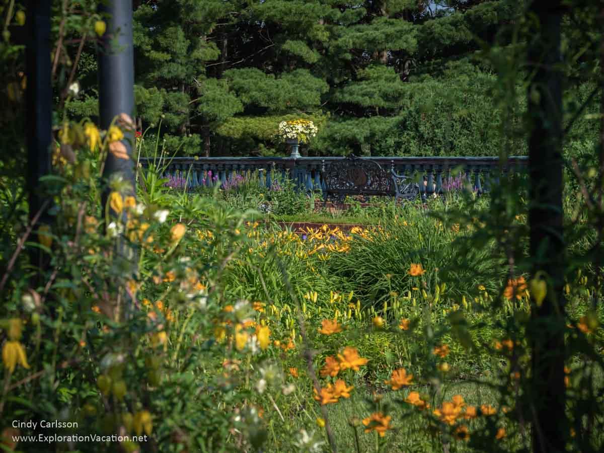 """windows"" in the metal arbor frame views of a garden"
