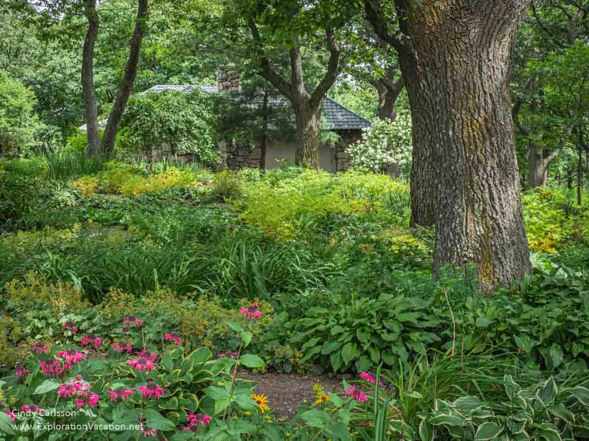 shade garden with bright flowers