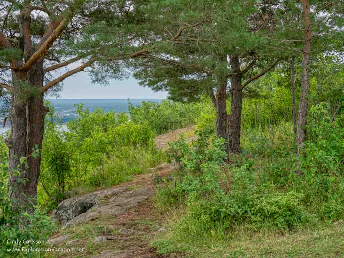 wooded trail above Lake Superior