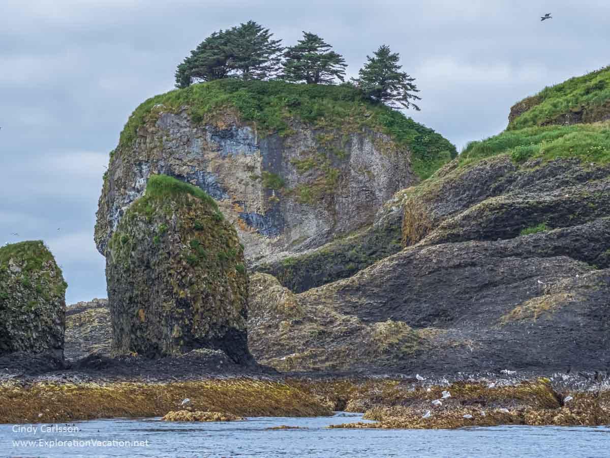 rocky island with sea birds in Sitka Sound Alaska