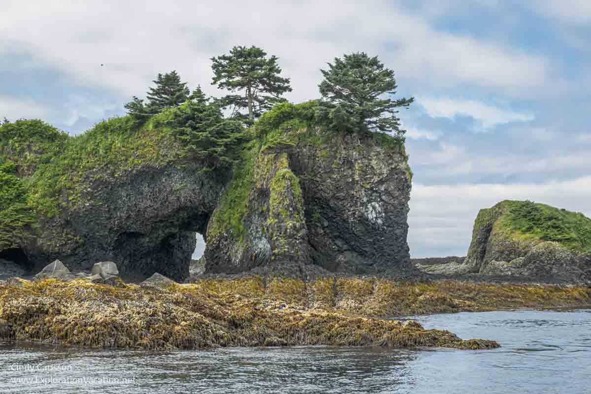 rocky island in Sitka Sound Alaska