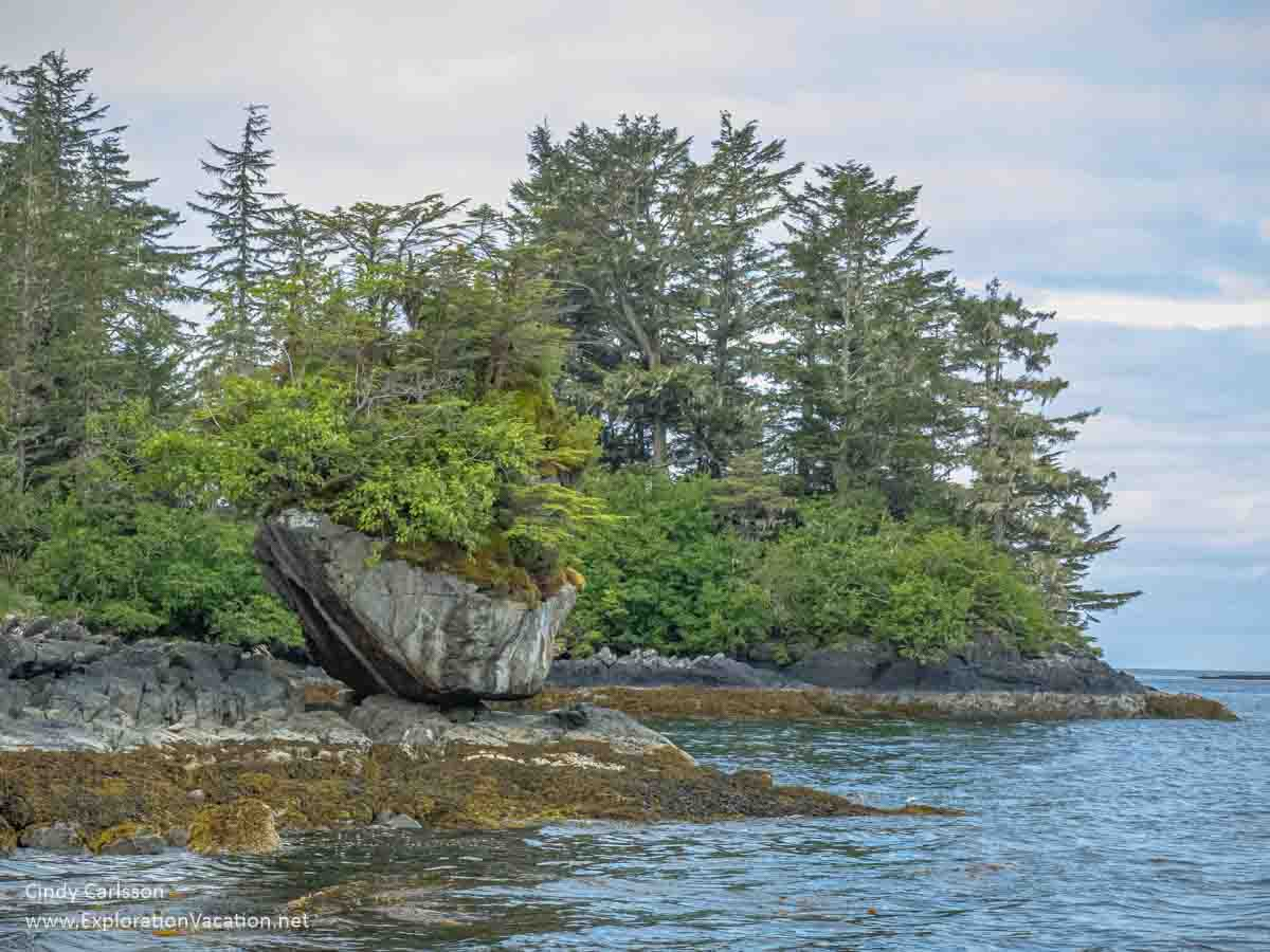 pine-covered island with a crescent-shaped rock