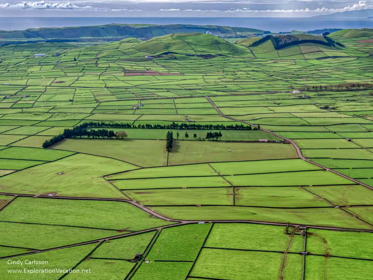 patchwork of green fields and fences seen from above